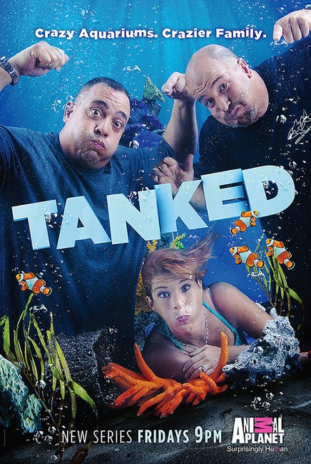"""Tanked"" Animal Planet's Reality Series"