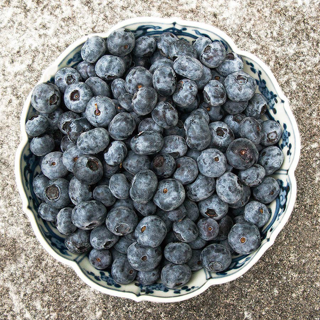 Blueberries: Woodstock, Vermont